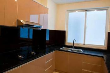 Chính chủ cho thuê căn hộ cao cấp Terra Rosa, Nguyễn Văn Linh 127m2, giá 8.5 triệu/tháng, full NT