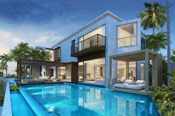 Cho thuê nhiều biệt thự tại Phú Mỹ Hưng DT 300m2 cho thuê giá 73 triệu/tháng. Call 0977771919