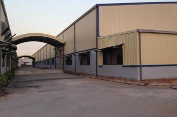 Cần cho thuê xưởng sản xuất diện tích 2000m2, 4000m2 đến 10000m2 tại Thái Bình
