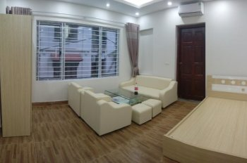 Cho thuê chung cư mới xây khu vực Đê La Thành, Xã Đàn, Hoàng Cầu