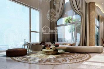Định cư nước ngoài bán gấp Penthouse Panorama, nhà cực đẹp, diện tích lớn giá 18 tỷ