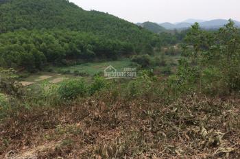 Cần bán đất đồi 8ha tại Yên Trung - Thạch Thất - Hà Nội