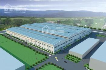 Cho thuê nhà xưởng sản xuất Thuận An