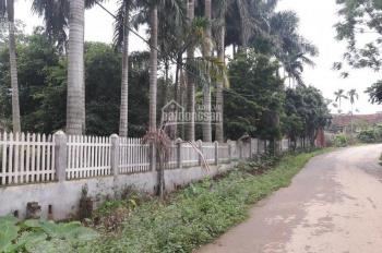 Bán 4 lô đất trang trại sinh thái Ba Vì, Hà Nội tuyệt đẹp, giá rẻ