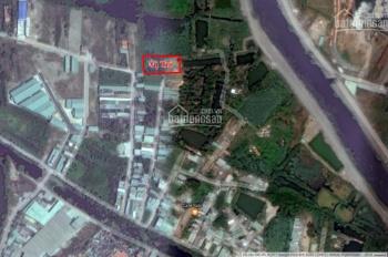 Trí BĐS bán 1.076m2, chuyển thổ cư 100%, hẻm Tỉnh Lộ 10 (cầu chùa Tân Tạo), hẻm to, giá tốt