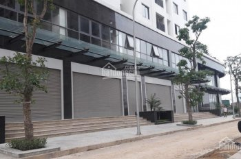 Bán 3 căn shophouse (Gian hàng ki ốt) trung tâm thương mại dự án Ecolife Tây Hồ