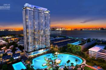 Anh chị cần tìm căn hộ để ở liền - hãy tìm đến An Gia Skyline - chất lượng cao cấp, LH: 0934679839
