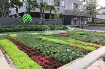 Cho thuê căn hộ 2PN, nội thất cao cấp, bao phí quản lý, LH Ms Van 0909907856