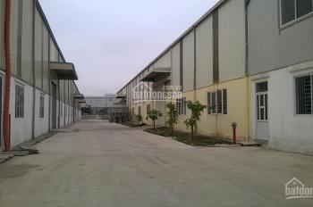 Cho thuê 2.000m2 kho xưởng lô 3 cụm CN Hợp Thịnh - Vĩnh Phúc của công ty CP Cường Duyên