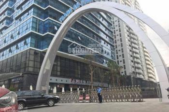 Cần bán gấp căn hộ cao cấp Tràng An Complex. DT 89m2, giá 3,5 tỷ, view vườn hoa, ĐT 0334718888