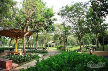 Cần cho thuê căn hộ Celadon City, 36 Bờ Bao Tân Thắng, 83m2, 3PN, 12tr/tháng. LH: 0932*742*068