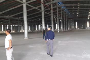 Cho thuê nhà xưởng phường Khánh Bình, Tân Uyên, Bình Dương, DT: 11000m2 mới XD. LH; 0908.561.228