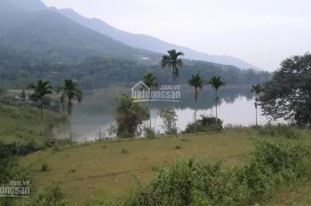 Nhượng 2ha đất trang trại khu nghỉ dưỡng view hồ tại Suối Ngọc, Tiến Xuân, Thạch Thất, giá 13 tỷ