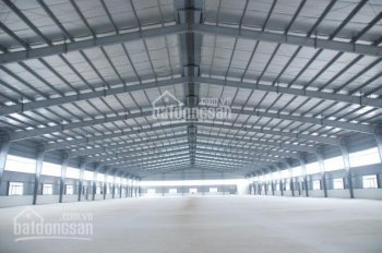 Cho thuê nhà xưởng, kho bãi DT 300 - 10.000m2 tại Bình Dương
