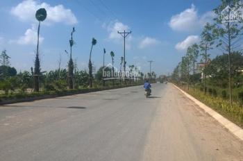 Bán đất dịch vụ Nam An Khánh, Xã An Thượng, Hoài Đức, Hà Nội diện tích 55m2 - 60m2 giá 16 triệu/1m2