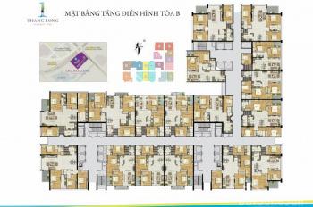 Tôi cần bán gấp căn hộ Thăng Long Number One, DT 170m2, 4PN, 3WC, giá 36,5 triệu/m2