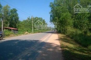 Cần tiền để kinh doanh, cần bán 12 hecta đất xã Long Phước, Long Thành, Đồng Nai