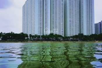 Cho thuê chung cư Linh Đàm, nhận nhà ở luôn, 2 phòng ngủ giá từ 5 triệu/th 1 căn 2 phòng ngủ