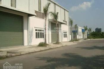 Cho thuê nhà xưởng DTSD 3.900m2, Ấp 2 huyện Bình Chánh (gần KCN Tân Tạo)