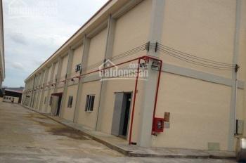 Cho thuê kho Q7 DT 150m2, 500m2, 800m2, giá 70,000đ/m2 HĐ dài hạn, kho riêng biệt, mới, PCCC