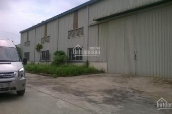 Cho thuê kho xưởng lô 3 cụm CN Dốc Sặc-TX Từ Sơn, Bắc Ninh, 2000m2 và 4.000m2 công ty Trường Giang