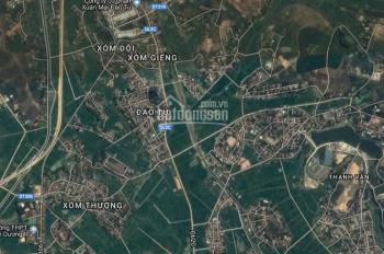 Bán trang trại mặt tiền 150m đường 2 xe container tránh nhau tại Tam Dương Vĩnh Phúc. LH 0984517465