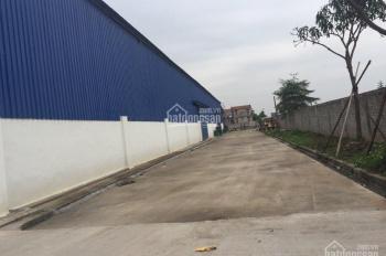 Cho thuê kho xưởng 7000m2 Văn Giang, Hưng Yên, cách Hà Nội 8km. LH: Cương 0967819777