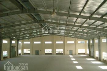 Cho thuê kho ngoài KCN Tân Bình Hoàng Văn Thụ, PVH. DT: 500m2, 1000m2, 1500m2, 10,000m2