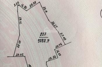 Cần bán lô đất 1.3ha Nhuận Trạch, giá rẻ làm khu sinh thái nghỉ dưỡng