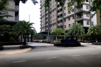 Chuyên cho thuê căn hộ Docklands ngay BigC, quận 7. LH 0909.44.82.84 gặp em Hiền