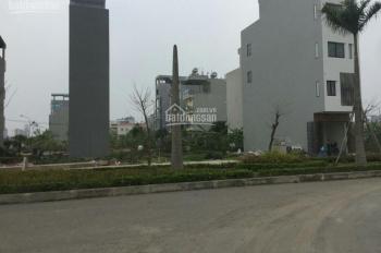 Bán đất dịch vụ Dương Nội, sát KĐT Dương Nội diện tích 50m2, sổ đỏ chính chủ, giá 2,2 tỷ