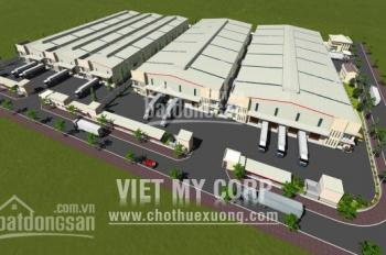 Cho thuê cụm xưởng ở Tân Hiệp, Tân Uyên, Bình Dương, DT: 3.000m2, 6.000m2, 9.000m2 đến 30.000m2