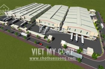 Cho thuê cụm xưởng ở Thạnh Phước, Tân Uyên, Bình Dương, DT: 3.000m2, 6.000m2, 9.000m2 đến 30.000m2