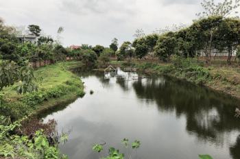 Nhượng QSD 3200m2 đất trang trại nhà vườn, thôn 7 Phú Cát, Quốc Oai, giá 2,6tr/m2