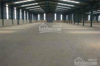 Cần cho thuê xưởng gỗ tổng diện tích 24.000m2 nhà xưởng 14.000m2 tại KCN Vĩnh Tân – Tân Bình, BD