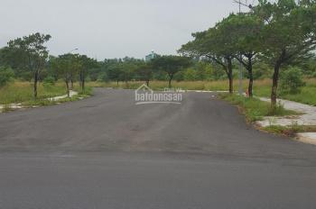 Bán đất mặt tiền đường nhựa giá chỉ 7,5 triệu/m2 xã An Phước, Long Thành