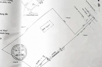 Cho thuê 5.000m2 đất Đại Lộ Bình Dương gần ngã 4 Hòa Lân, Thuận An, mặt tiền ngang 4.6m vào đất