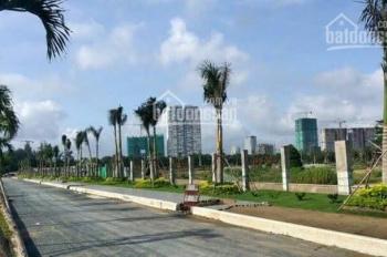 Đất đối diện KĐT Khang Điền, MT Dương Đình Hội giá chỉ 1,8 tỷ/80m2, tiện ích đầy đủ SHR, ngay TTTM
