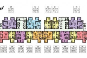 Amber Riverside 622 Minh Khai báo giá căn chuẩn nhất, tư vấn căn đẹp nhất, LH ngay: 0984812891