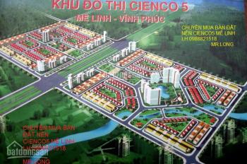 Bán liền kề Cienco 5 huyện Mê Linh 100m2, nhìn sang Trường Đại Học Tài Chính Mê Linh
