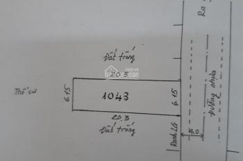 Bán đất mặt tiền hẻm xe hơi 8m đường Tân Mỹ, p. Tân Thuận Tây giá 70 triệu/m2