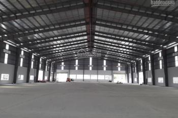 Cho thuê nhà xưởng 4200m2 trong KCN Tân Đô, Đức Hòa