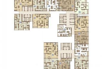 Bán chung cư Mandarin Hòa Phát 144m2, 130m2, 168m2, 172m2 duplex 267m2. 0974681333