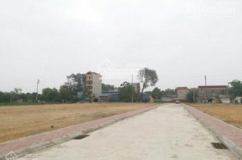 Bán đất đấu giá tại Bình Minh, Thanh Oai, Hà Nội