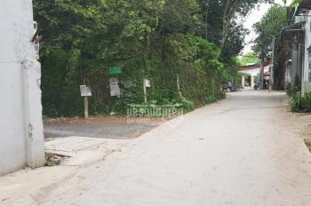 Đất vip tại Dĩ An, DT 5.656m2, hẻm bê tông 4m sát đường Nguyễn An Ninh, gần chợ Dĩ An, Bình Dương