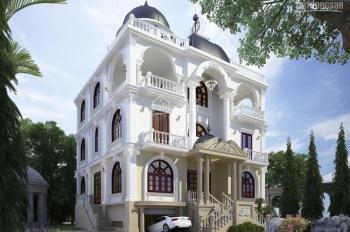 Cho thuê nhà nguyên căn mặt tiền khu đất vàng 16x21m, 1 trệt 2 lầu