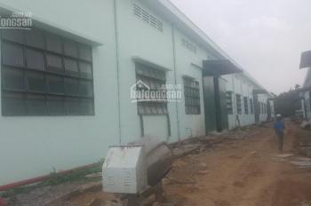 Cho thuê nhà xưởng khu công nghiệp Tam Phước, Đồng Nai