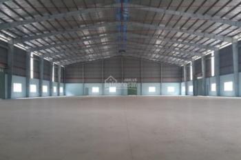 Cần cho thuê kho xưởng 2000m2 MT Trần Đại Nghĩa, cont 24/24, PCCC, bình hạ thế 1000KVA, an ninh