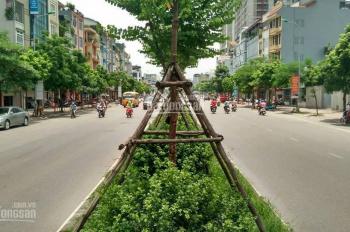 Bán nhà MP Tân Mai - Kim Đồng, phố mới Vành Đai 2,5 kinh doanh cực đỉnh 65m2, MT đẹp. Hơn 14 tỷ