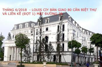 Liền kề Louis II tại KĐT Louis City, Đại Mỗ, 96m2, hướng Đông Nam, giá 55 tr/m2, LH: 0946543583